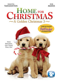 A Golden Christmas 3: Home for Christmas